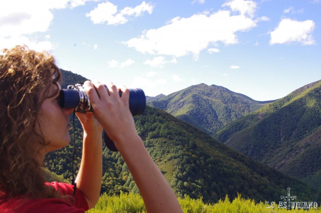 Mirador del Montecín, Moal.