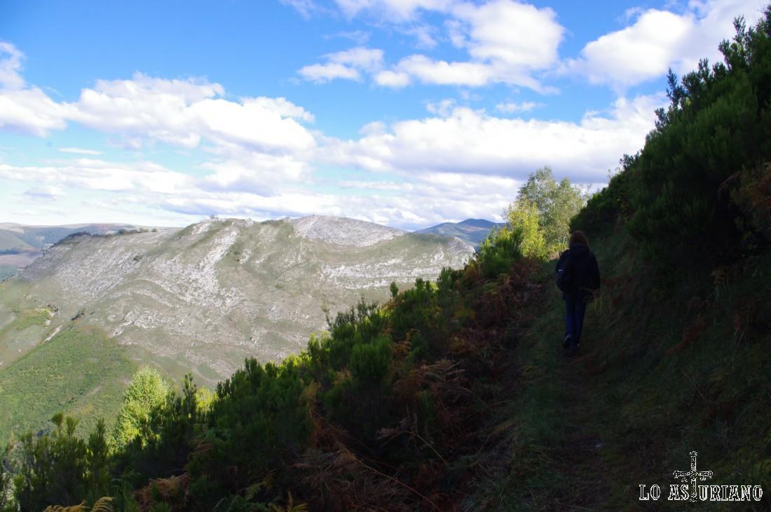 La senda ahora está abierta a nuestra izquierda, hacia el valle del Muniellos.