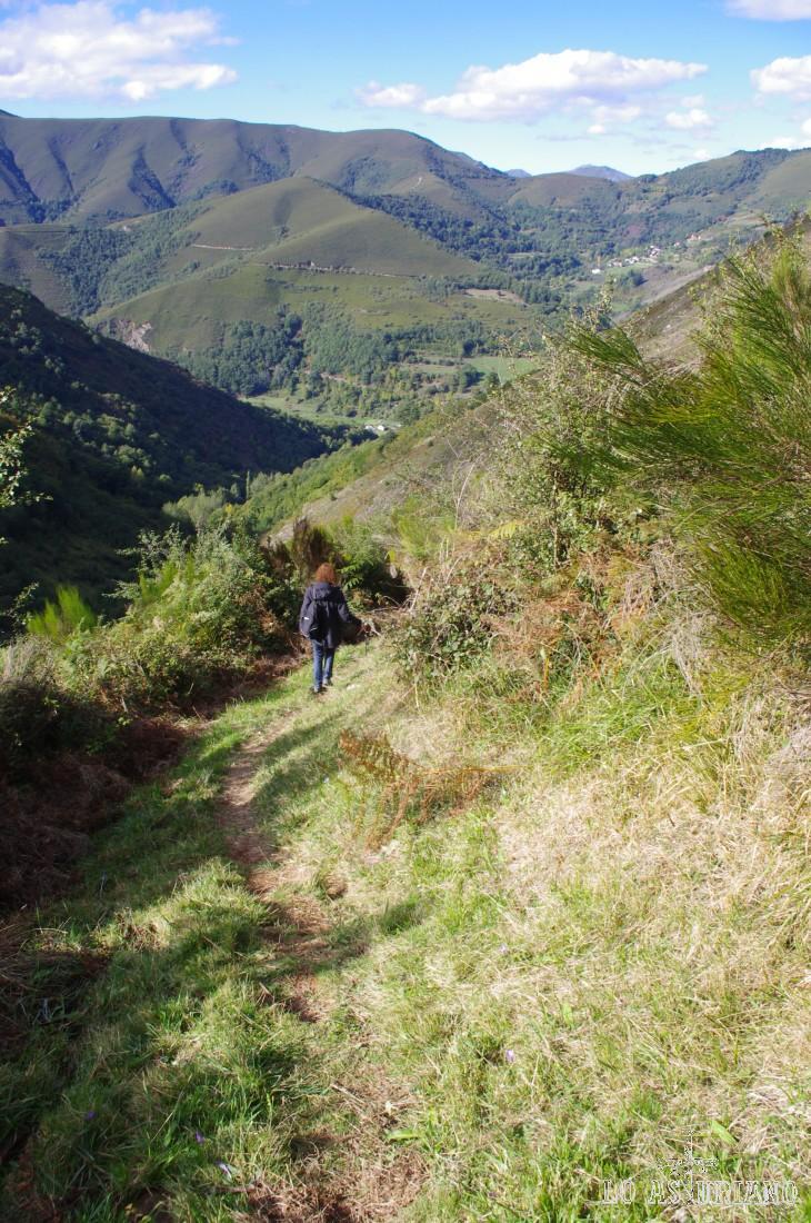En el momento en que bajamos, la senda estaba bastante limpia. Ha habido épocas, que esta parte de la ruta estaba muy cubierta por helechos.