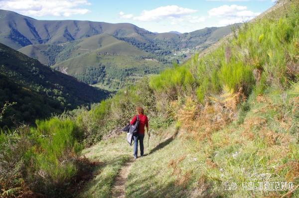 Bajada hacia Moal, por las laderas del Moncó.