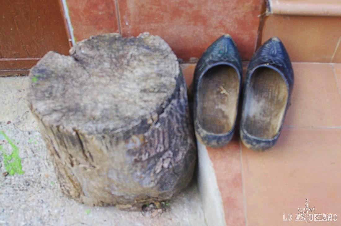 Los zuecos fueron utilizados, y aún se siguen utilizando en algunas regiones (áreas rurales de los Países Bajos, León, Galicia, Asturias y Cantabria). Tradicionalmente están hechos con madera de sauce o de álamo.