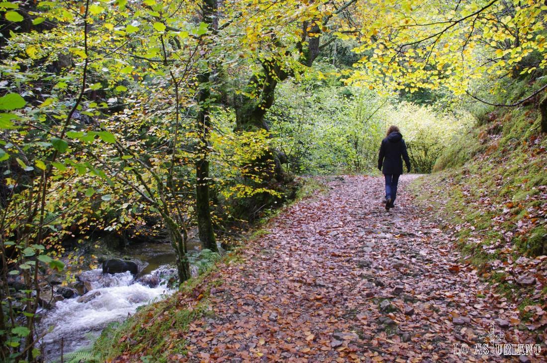 El precioso camino al lado del río Alba.
