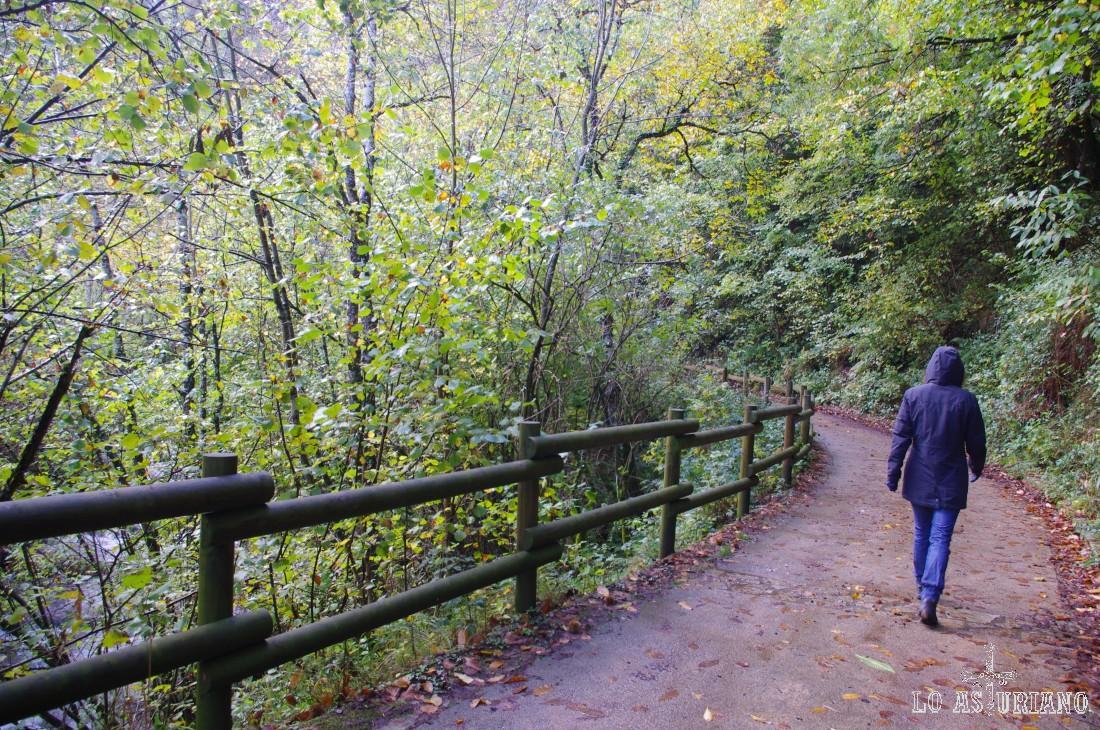 Caminamos en este remanso de paz, rota sólo por el ruido del transcurrir alegre del río Alba.