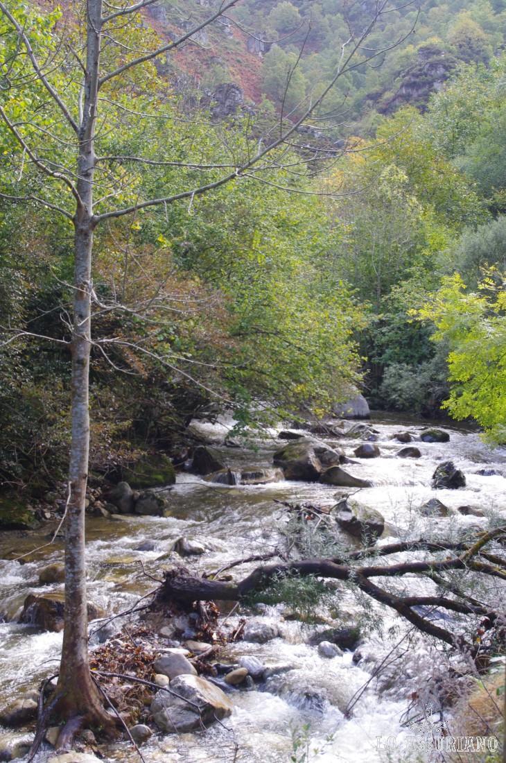 El alegre y ruidoso Alba. El río Alba nace en los altos de la Sierra de Collarroces y desemboca en el embalse de Rioseco.