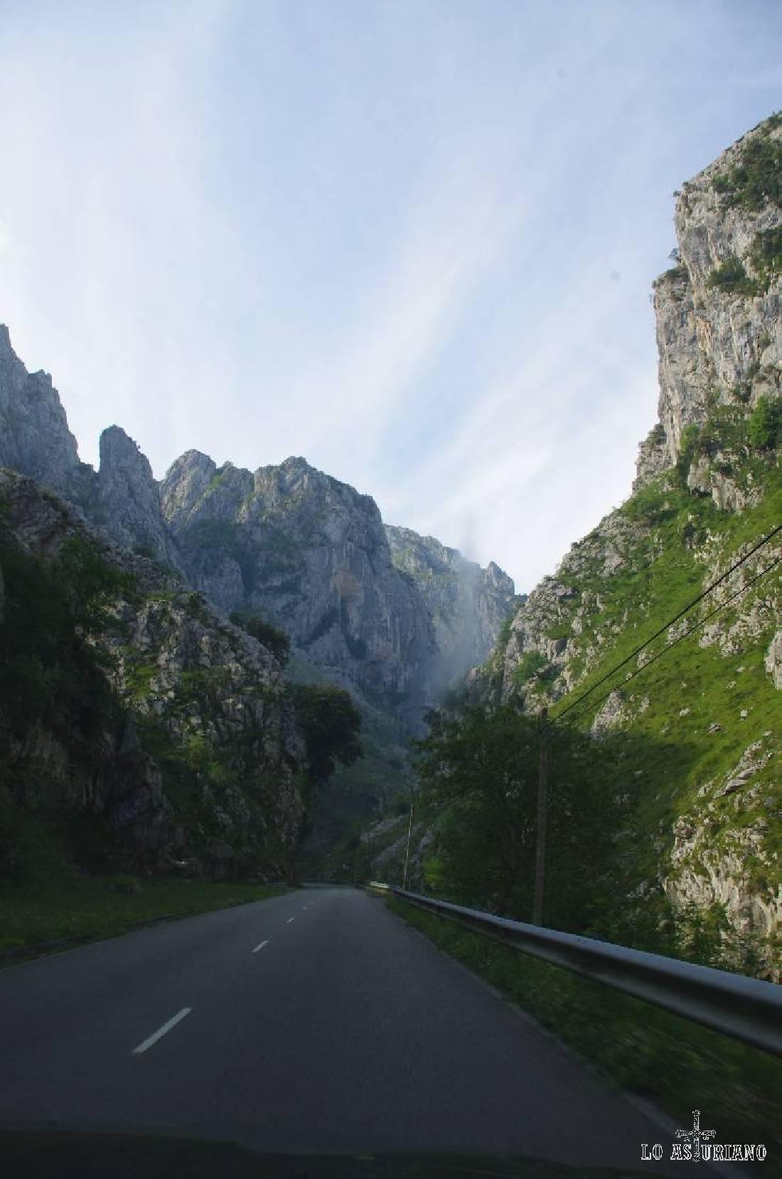 La carretera se va adentrando en las paredes rocosas del concejo de Cabrales, uno de los más bonitos de la zona.