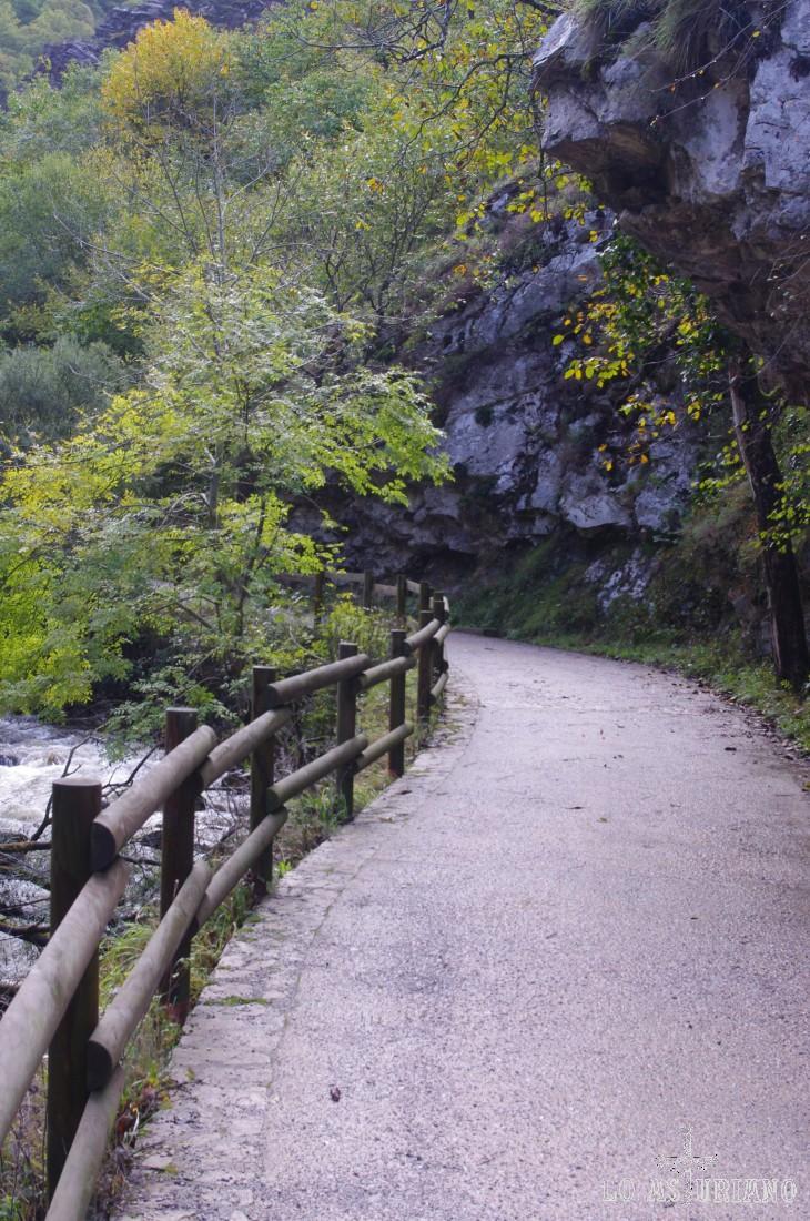 La senda del Alba, cuando transcurre muy cerca del río o hay mucho desnivel entre camino y río, tiene estas vallas de madera.