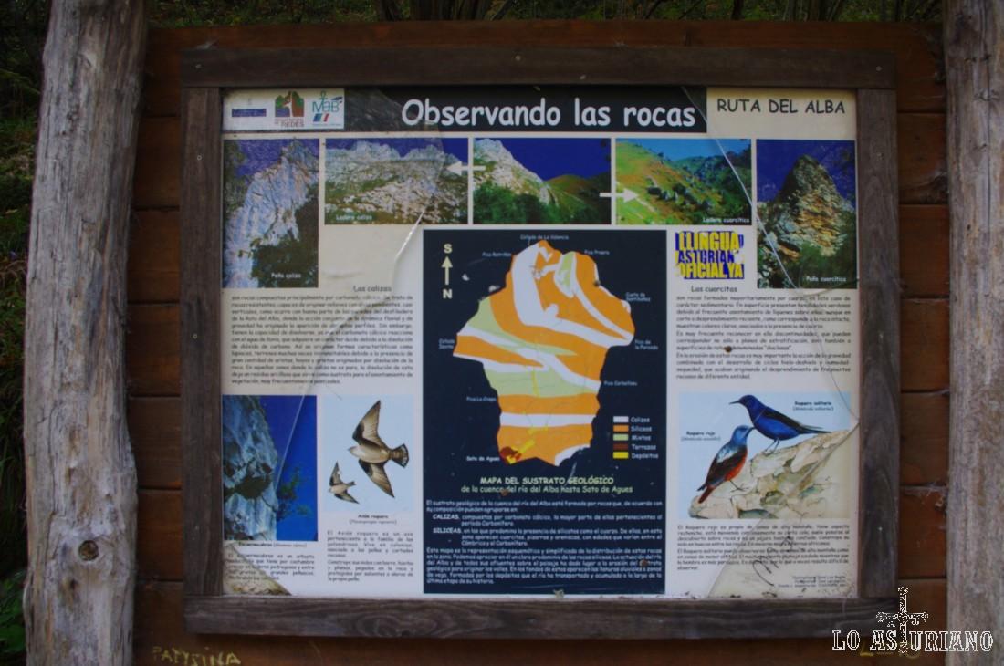 Calizas y cuarcitas, son los tipos de roca predominantes en el entorno de esta ruta. En el panel, también se enseñan algunas aves que viven en el Alba, recordemos perteneciente a una Zona Especial de Protección de Aves.
