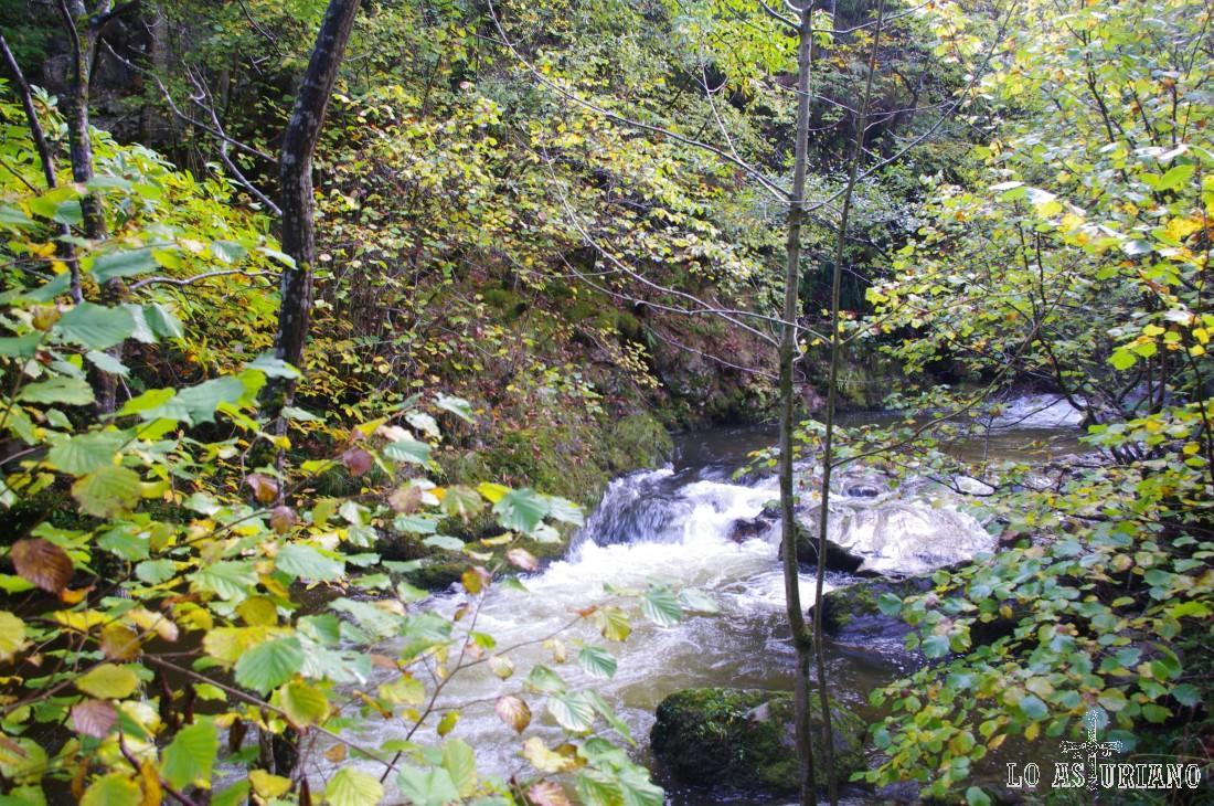 Río Alba en la zona de el Felgerosou.