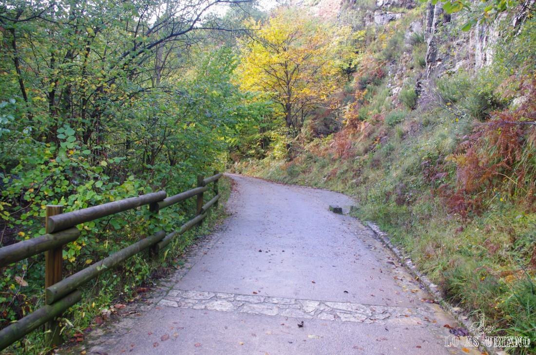 La característica pista cementada de la ruta del Alba.