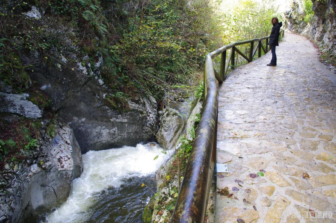 Preciosas imágenes del río Alba.