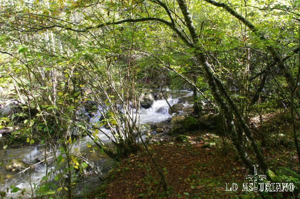 El fabuloso río Alba.