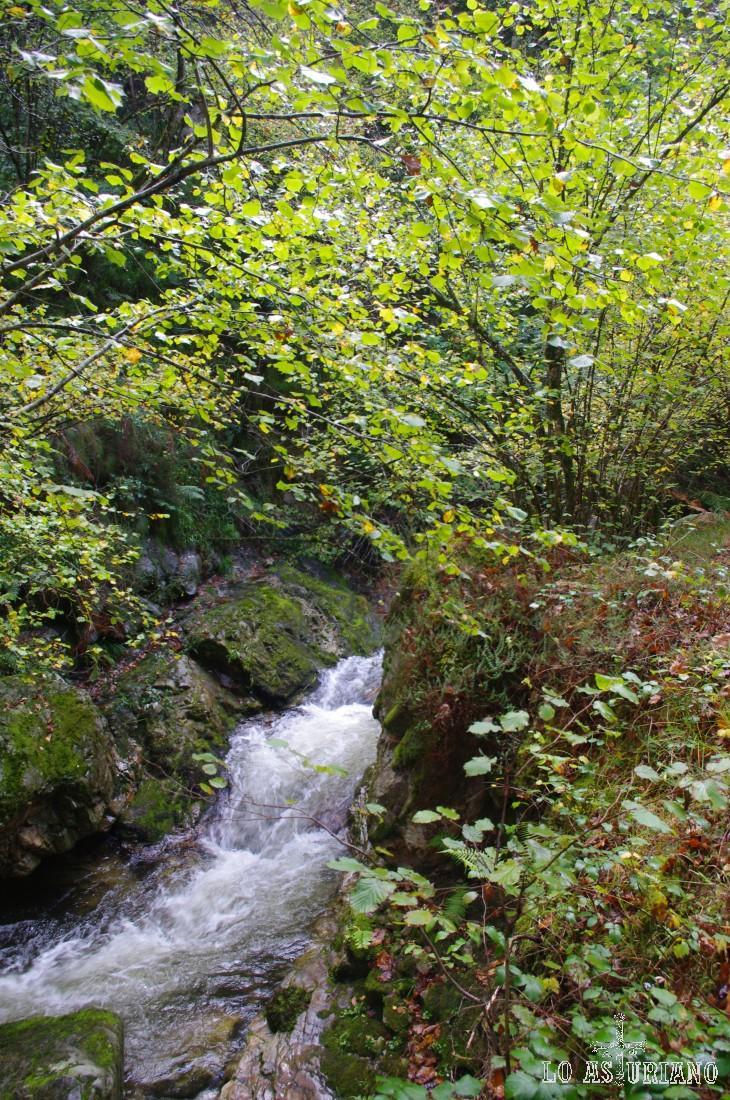 Pequeñas cascadas ruta del Alba.