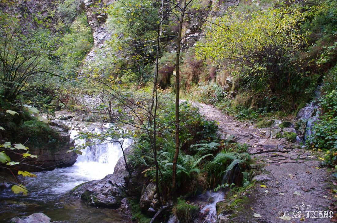 La ruta del Alba es una impresionante sucesión de caídas de agua, cascadas..., y envuelta una vegetación exhuberante.