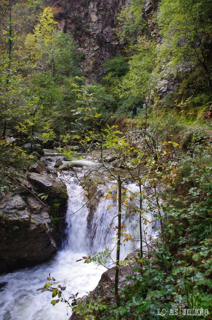 En pocos sitios el sonido de la naturaleza es tan extraordinario como en este desfiladero del Alba.
