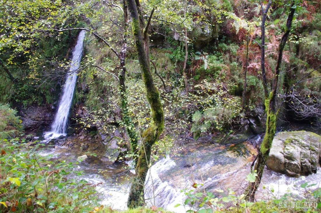 Saltos de agua y cascadas.