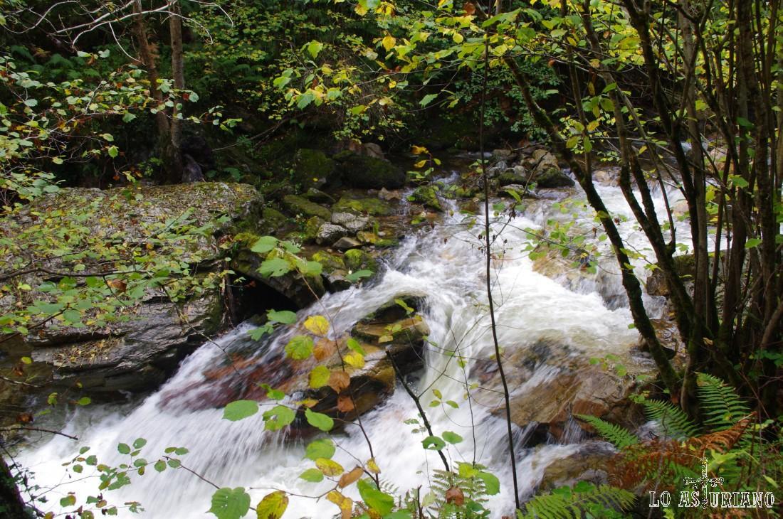 Agua del río Alba.