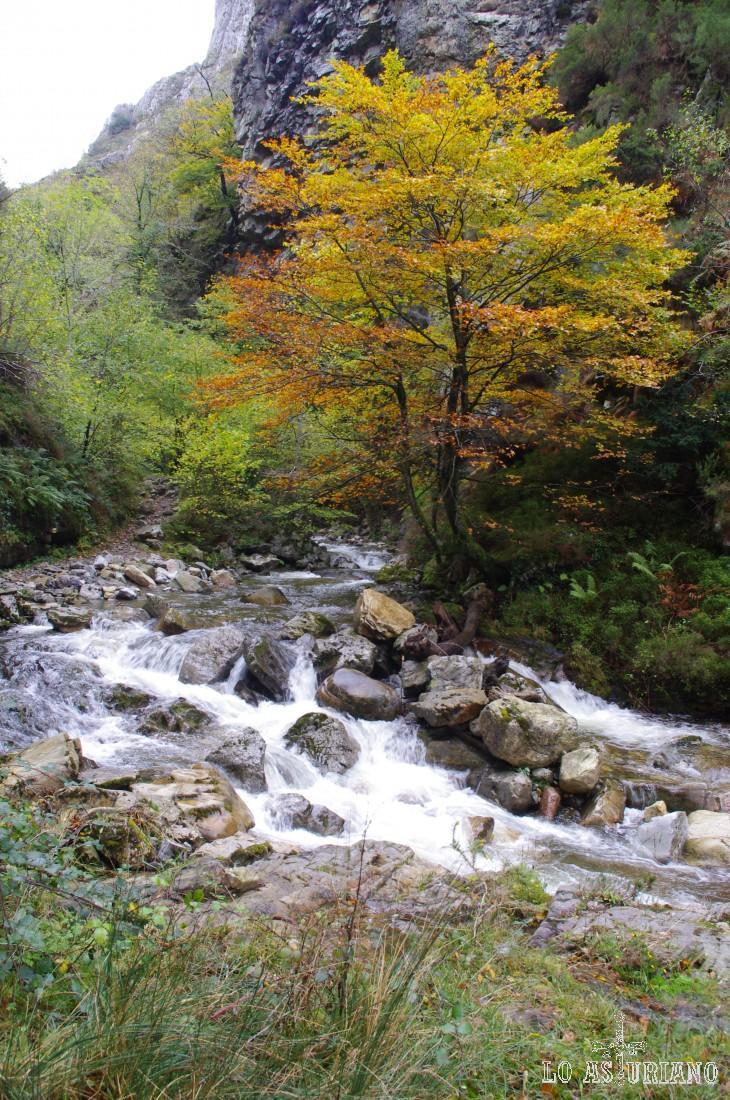El otoño deja su huella en la ruta del Alba.