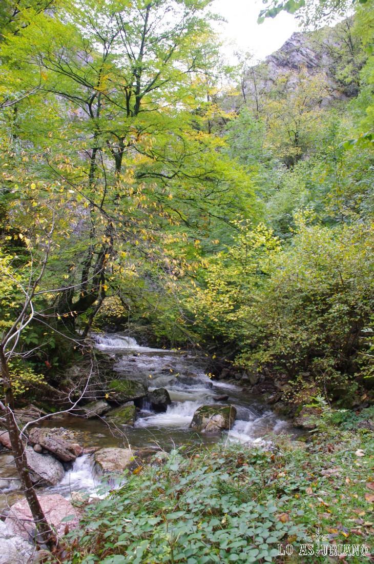 Río Alba, en la parte alta del desfiladero.