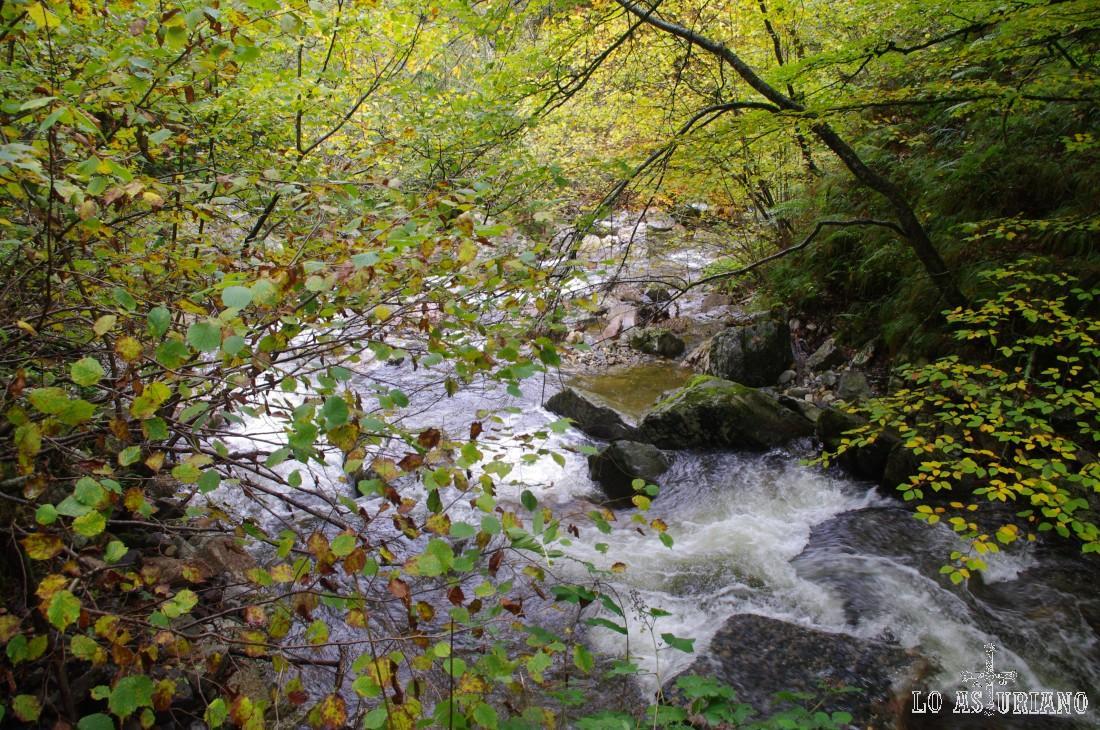 El río Alba en la parte alta del desfiladero.