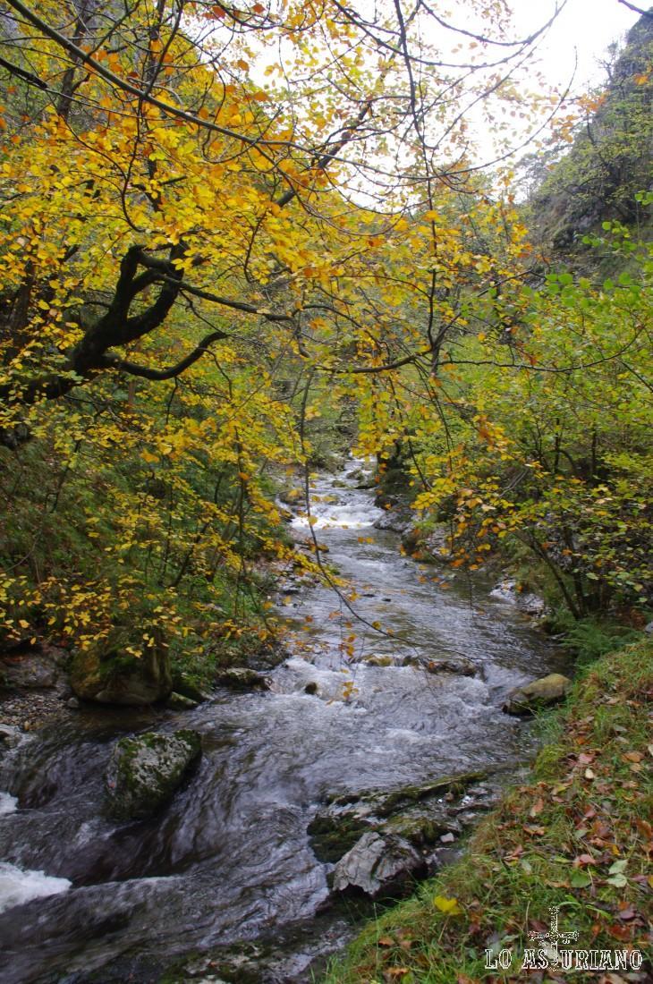 La Ruta del Alba es una senda perteneciente al concejo de Sobrescobio en Asturias e incluido en el Lugar de Importancia Comunitaria (LIC) de Redes.