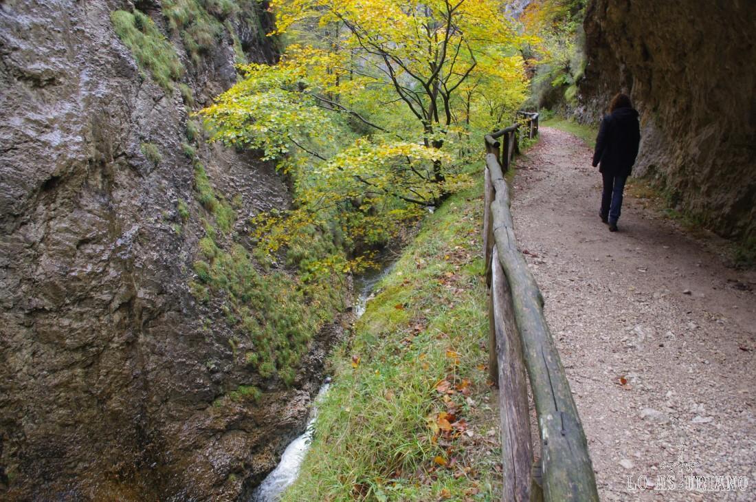 El río Alba está en esta zona encajonado entre paredes calizas verticales, con cascadas de diferentes tamaños a la vista y voladizos.