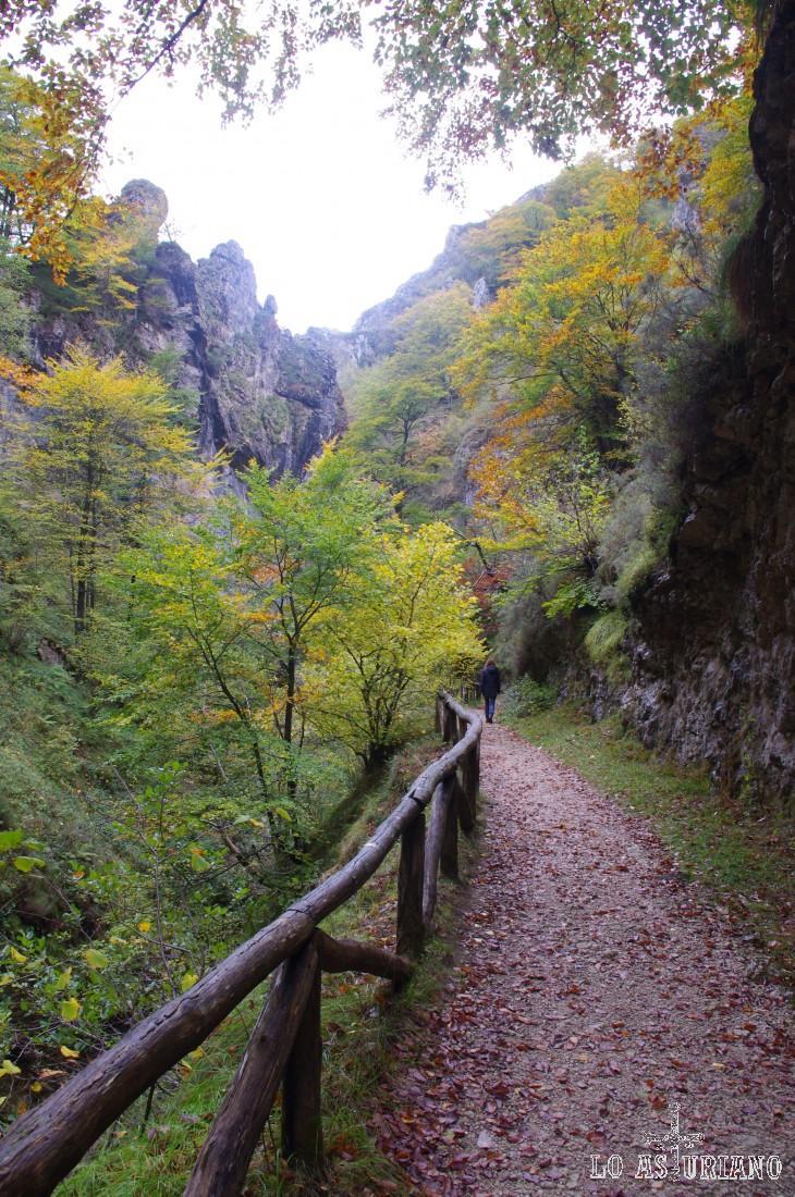 Pasear por las foces del Llaímo (ruta del Alba) es un placer para cualquier excursionista. El monte Llaímo se encuentra en la parte alta del río Alba y posee un bonito bosque, especialmente en otoño.
