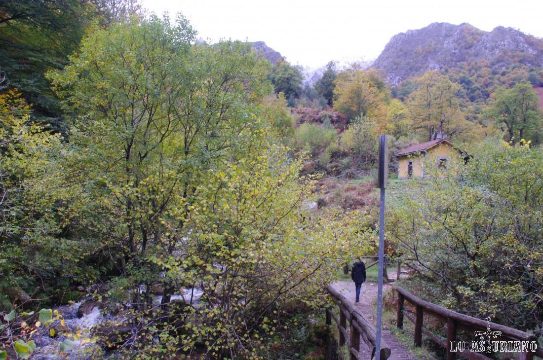 El río Alba, en esta zona de la Cruz de los Ríos, recibe el agua del arroyo del Llaímo y de otros regatos.
