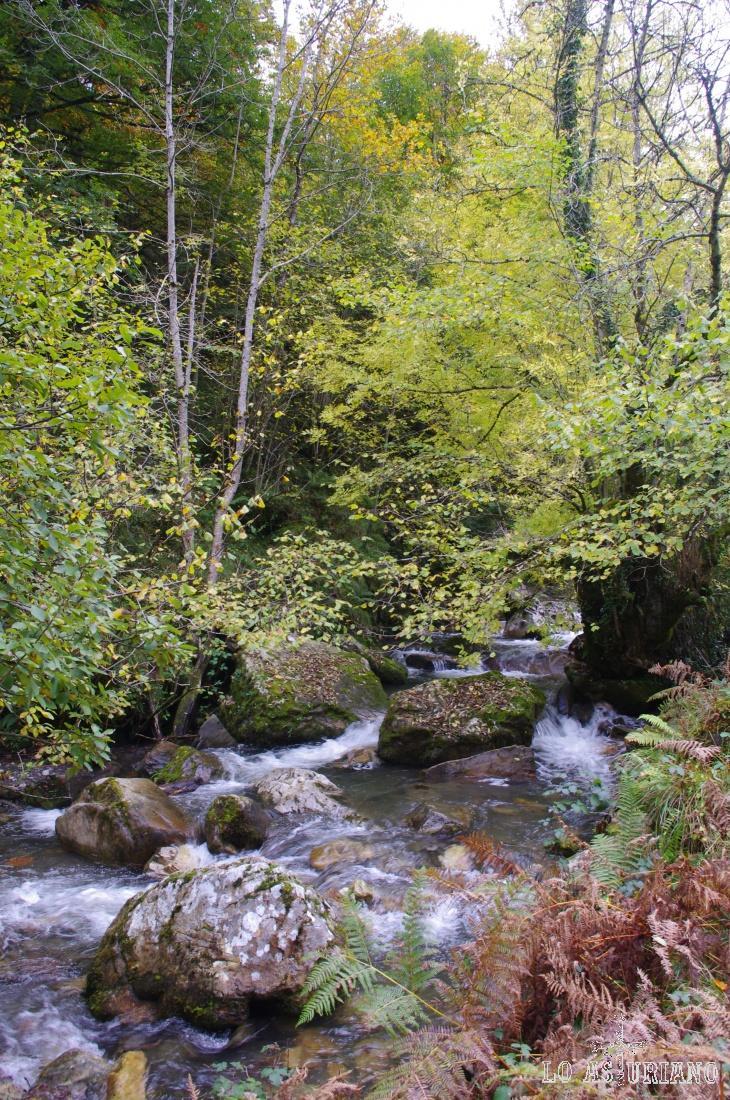El río Alba en la zona del refugio.