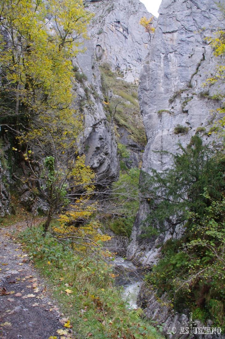 Desfiladero del río Alba.