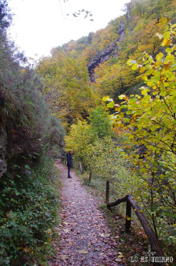 Riberas del Alba con los colores del otoño.