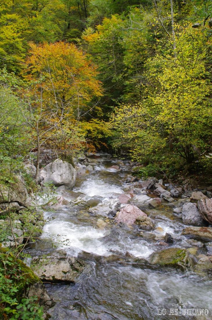 El río Alba, que recorre la parte baja del Parque Natural de Redes.