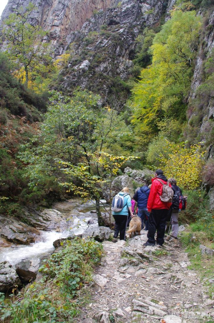 La ruta del Alba es una de las más populares y frecuentadas del Parque Natural de Redes, junto a la ruta a Brañagallones.