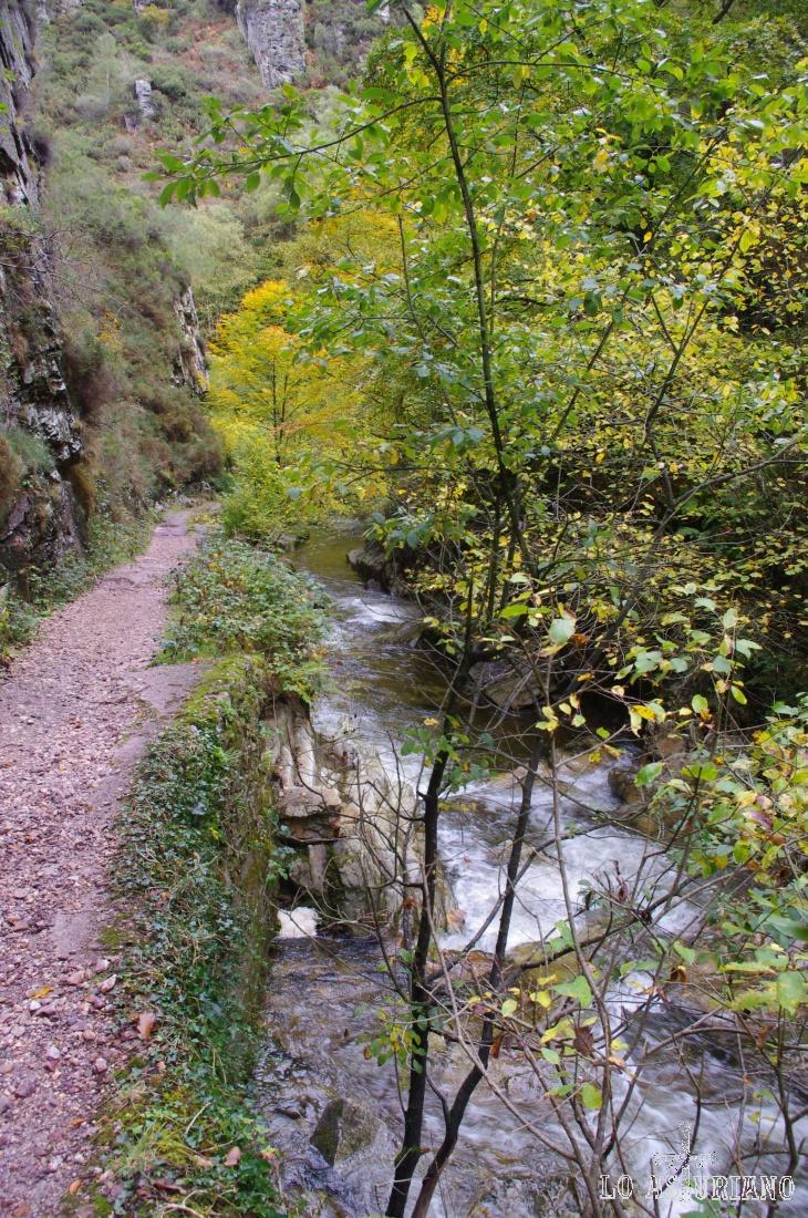 El camino transcurre junto a los saltos de agua del nervioso río Alba.