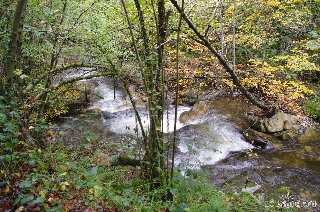 Escalones de agua en el río Alba.
