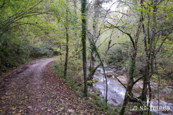 Ruta del río Alba.