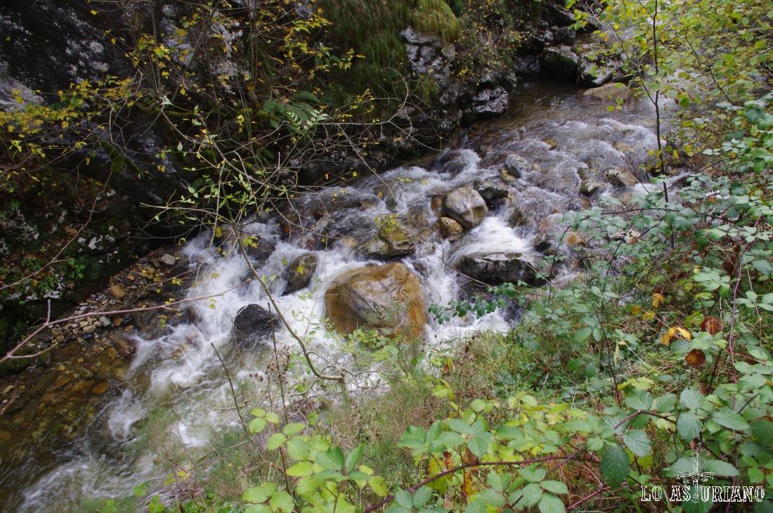 Aguas del río Alba.