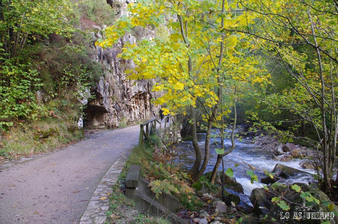 El sonido incansable del río Alba es la relajante música que tendrás en esta fabulosa ruta.