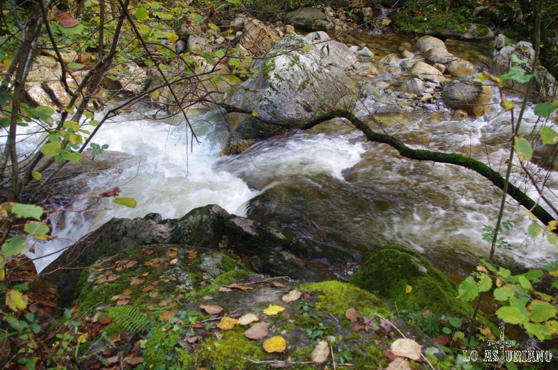 El agua choca contra las rocas, sonido celestial para el caminante que busca la relajación en el fantástico Redes.