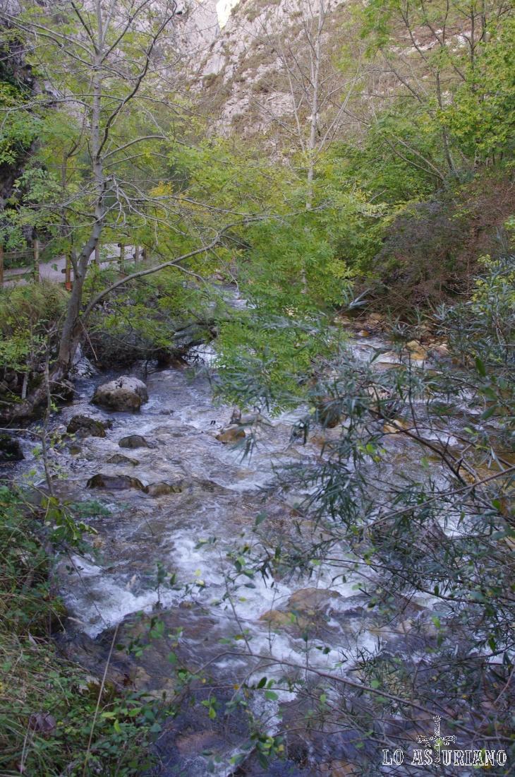 Más imágenes de este precioso río asturiano.
