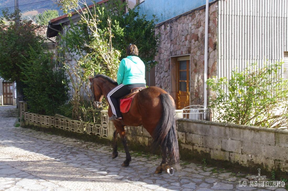 En Asturias, en las zonas de montaña, es bastante fácil ver caballos por las calles de los pueblos.