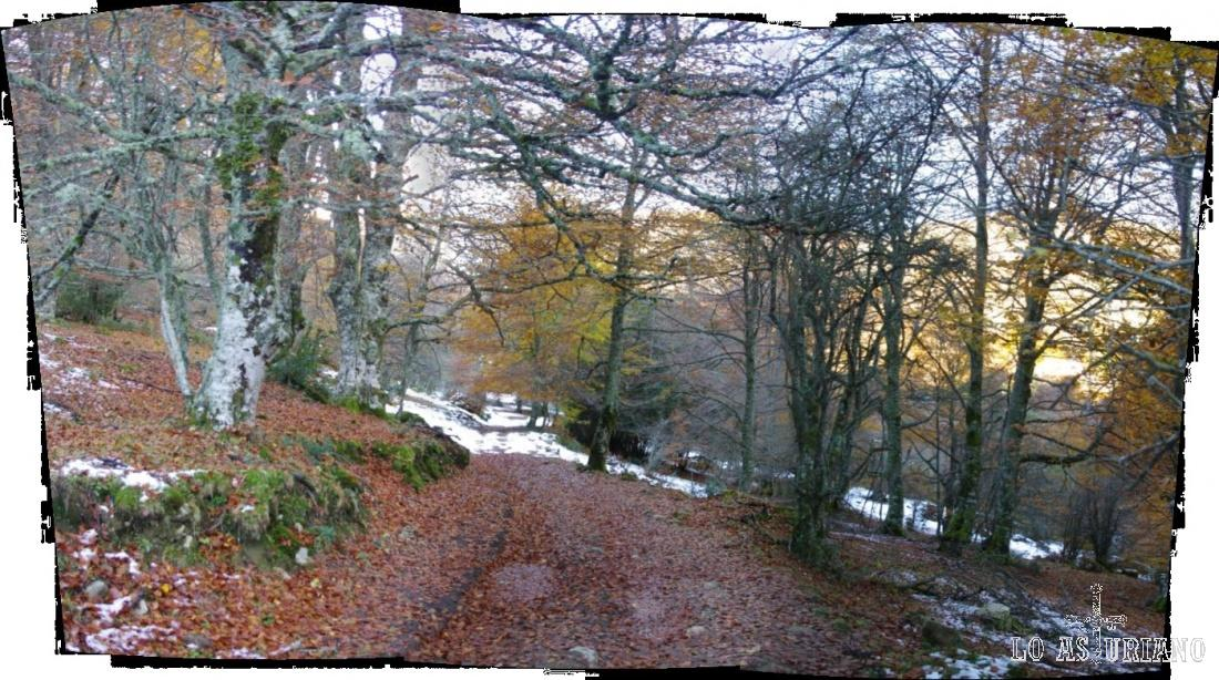 Subidita hacia las fuentes del río Monasterio, que forma uno de los más bonitos valles de Redes.