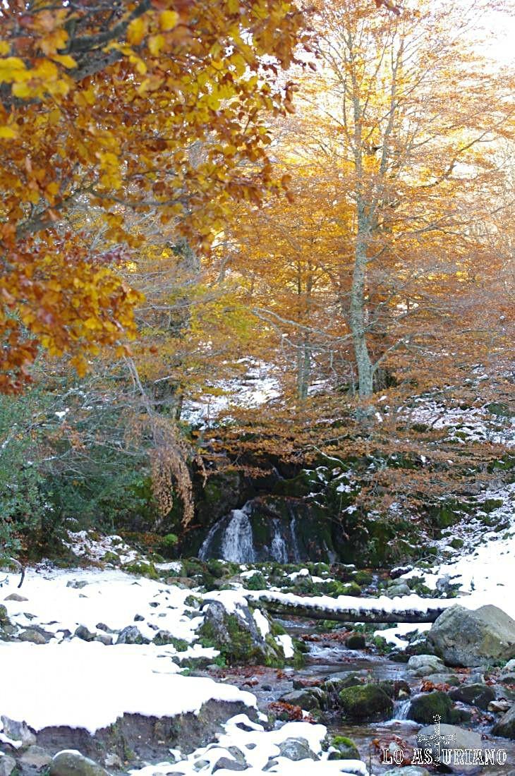 Esta cascada del río Monasterio es uno de los rincones más especiales de este entorno del Parque Natural de Redes.