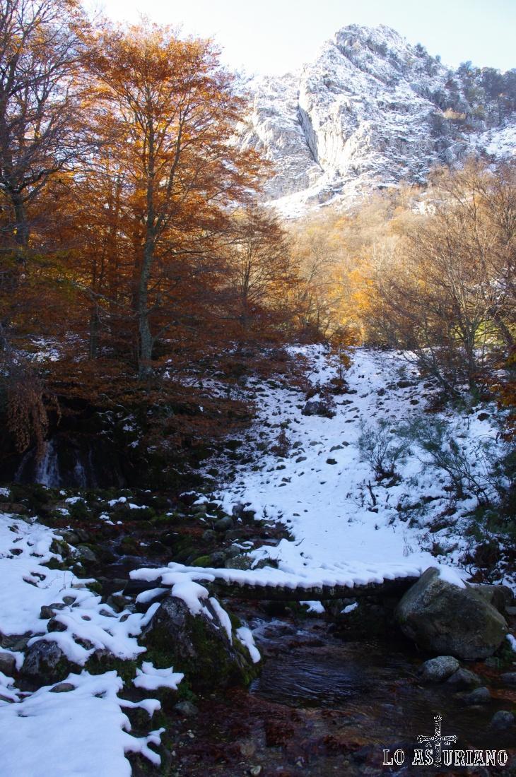 Rincón idílico del Parque Natural de Redes, en la parte alta del valle del Monasterio.