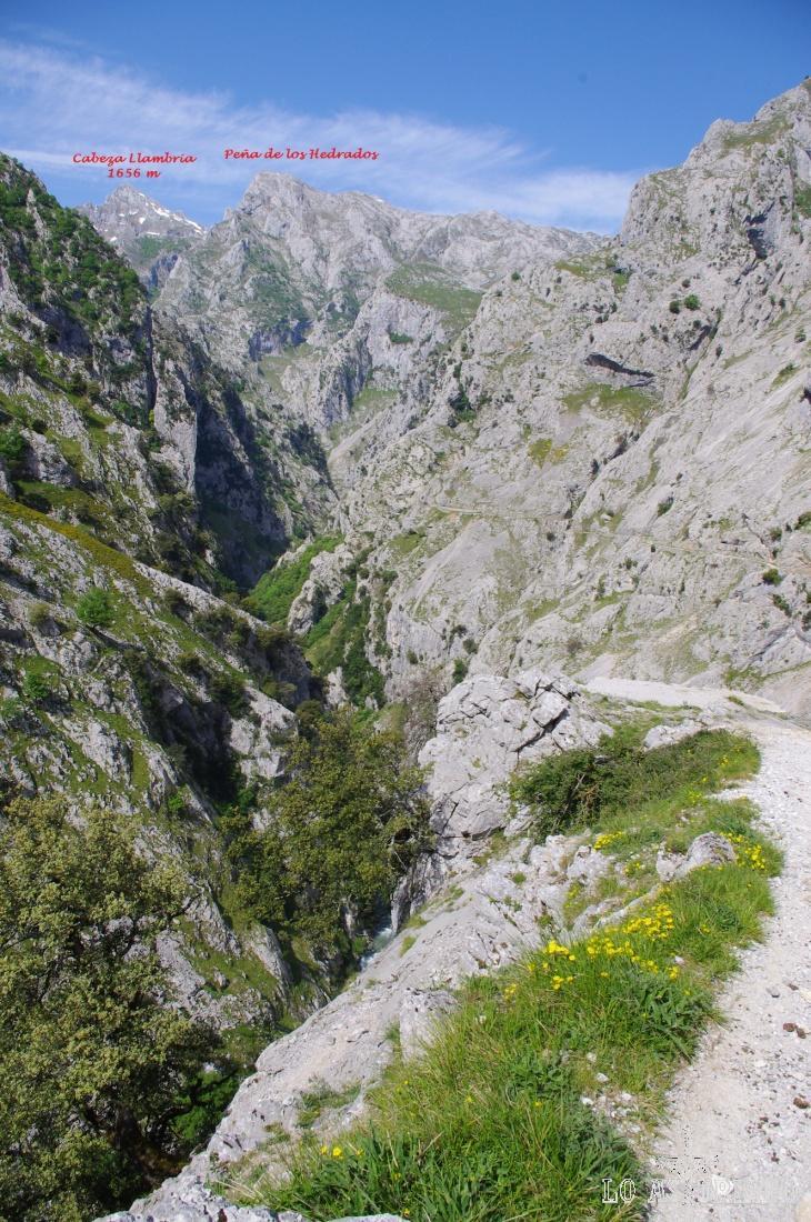 Desde el camino del Cares, al fondo: Cabeza Llambria y Peña de los Hedrados.