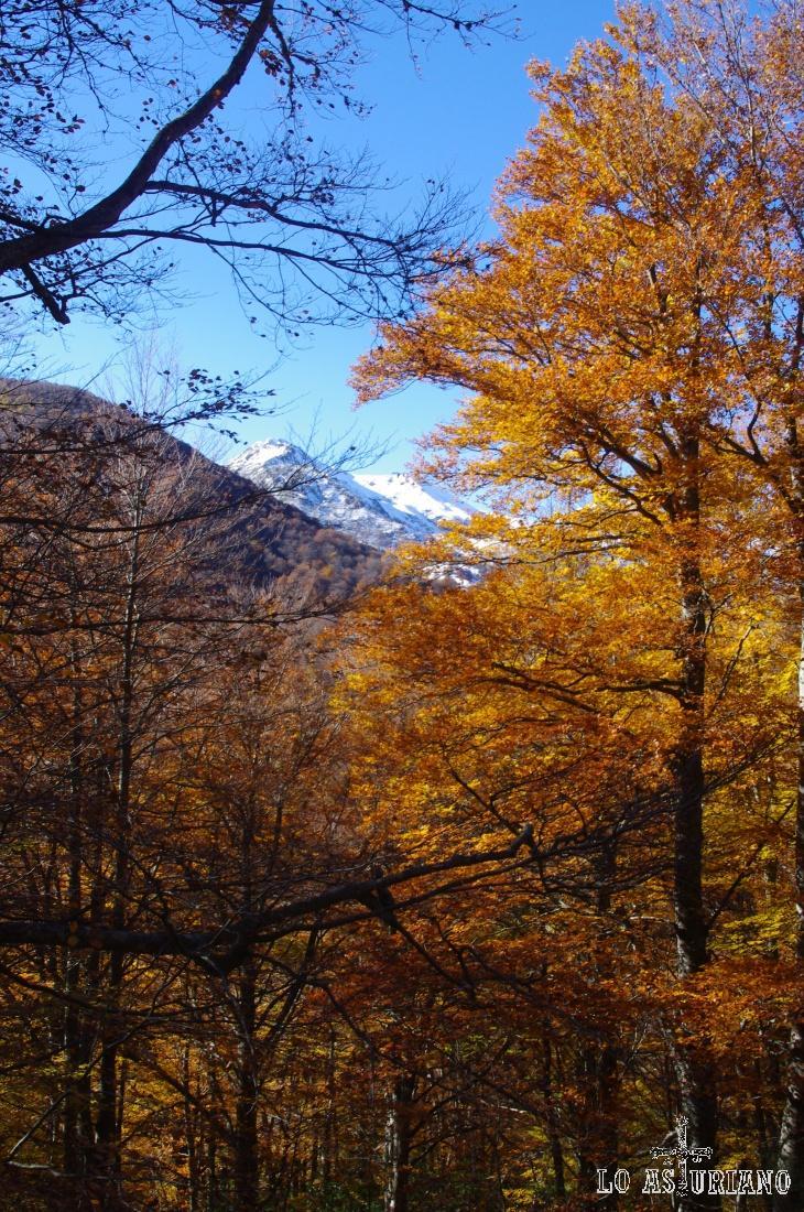 Las cumbres nevadas de Redes, a principios de noviembre.