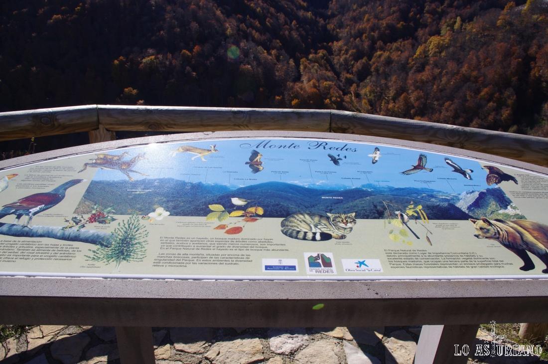 Panel informativo en el mirador sobre el valle del río Monasterio.