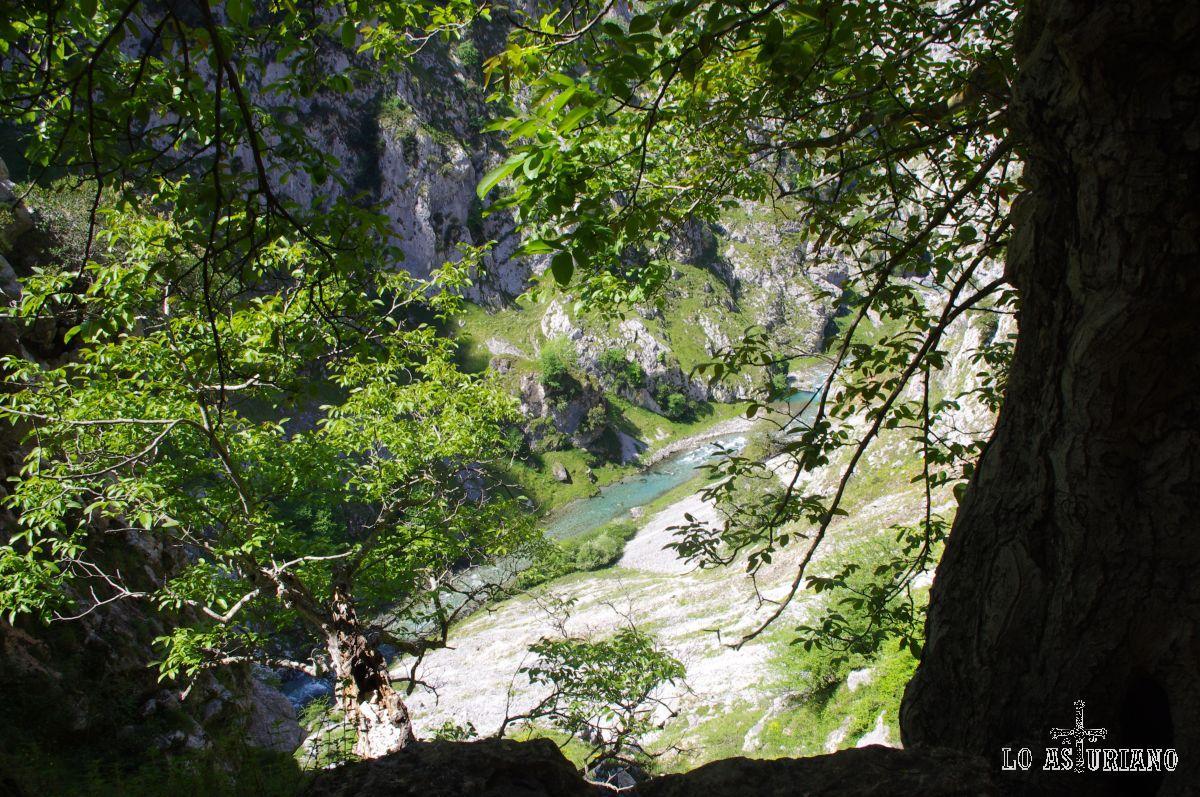 No se sabe con exactitud el lugar donde nace el Cares; hay varias fuentes en los valles de Valdeón, que conforman este río cristalino y alegre.