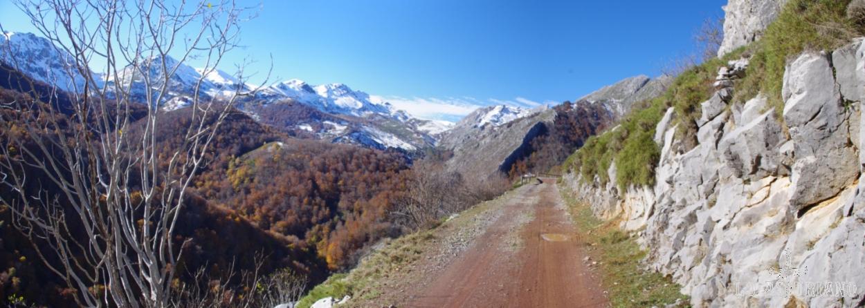 Pista que lleva desde Bezanes hasta la Vega de Brañagallones, en lo alto del Parque Natural de Redes.