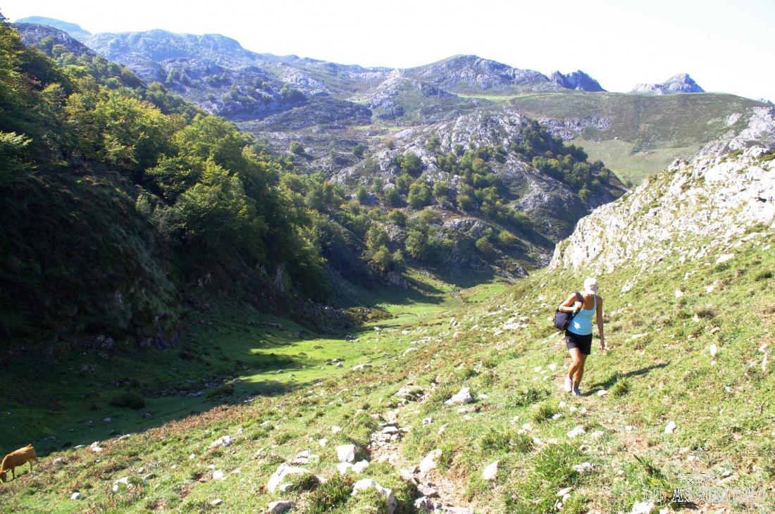 """Es posible realizar una maravillosa ruta en el entorno de las majadas de Covadonga. Puedes encontrarla en la sección """"rutas"""", donde pone """"Mirador de la Güelga"""", que es a la que pertenece la foto."""