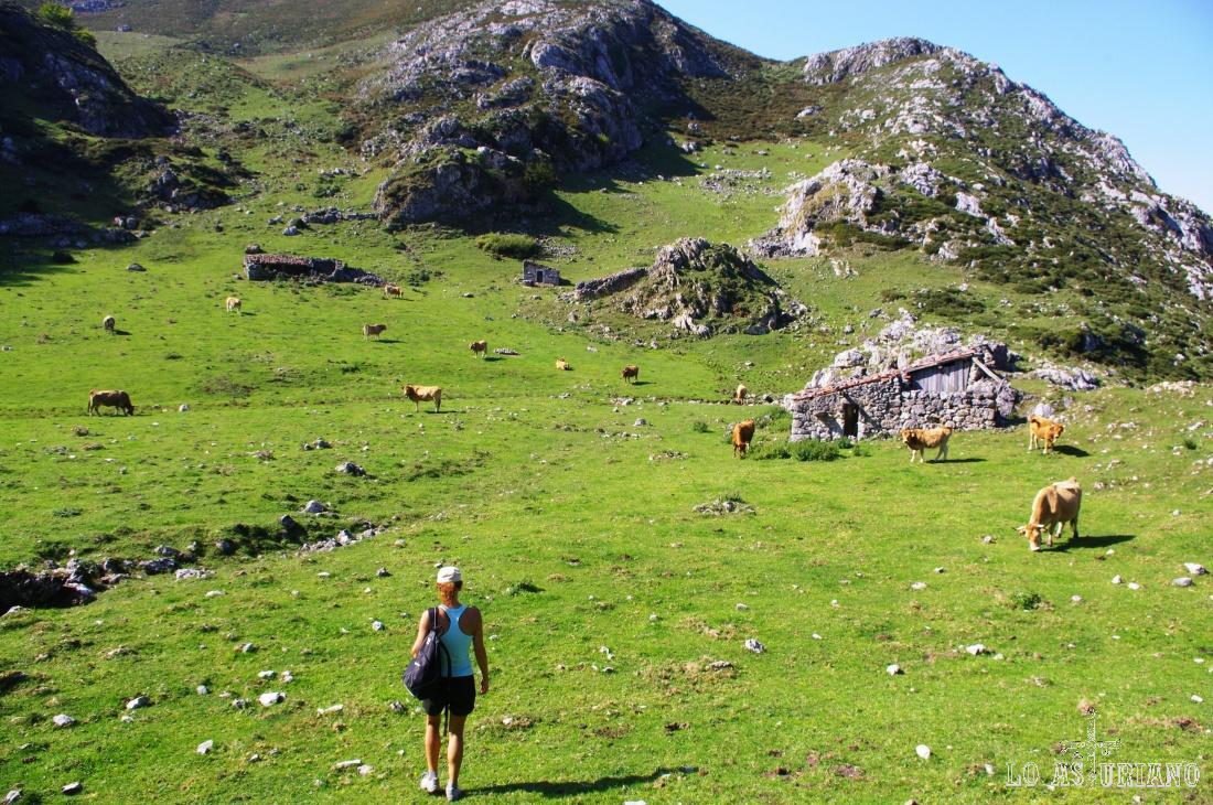 Pasando por la preciosa y recóndita majada de la Güelga, a 1 hora y algo de los lagos de Covadonga.